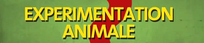 Journée Mondiale des animaux dans les laboratoires + Vidéo