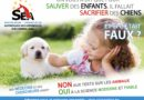 Nouveau record pour le Télévie: 12.114.560 euros destinés à la souffrance animale